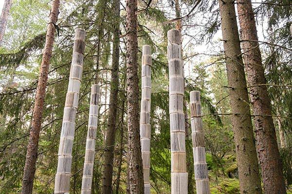 Arja Maarit Puhakka Written Forest Barefoot Path 2021