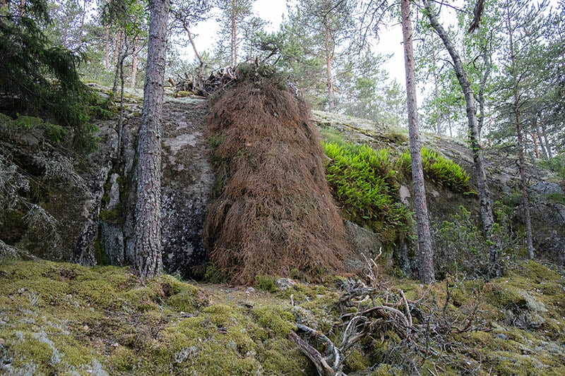 Kimmo Ylönen Material Flow Barefoot Path 2021