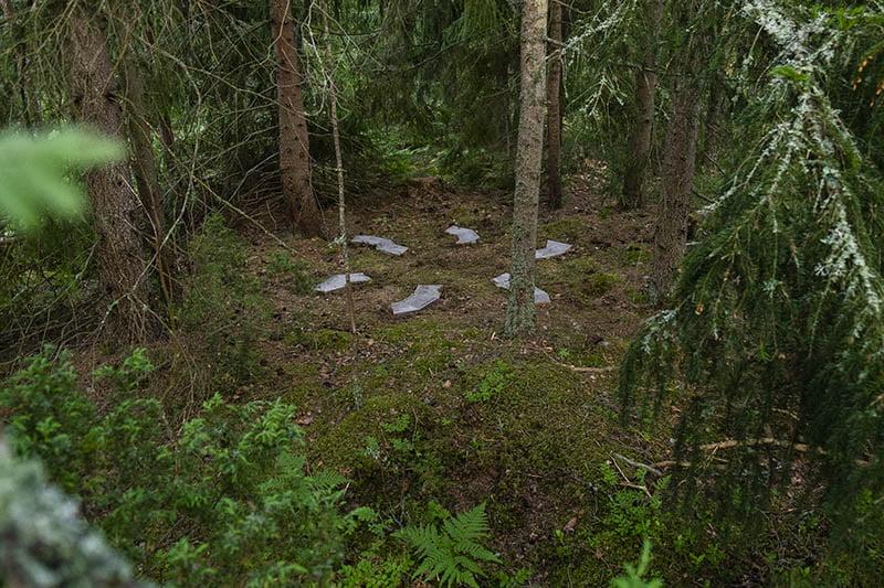 Pia Rousku Barefoot Path 2021 Small Thoughts