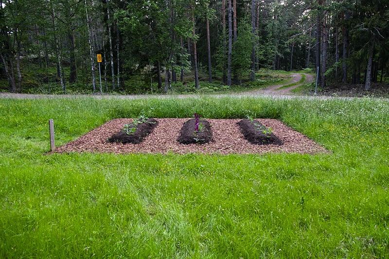 Sandra Nyberg Utile Inutilia Barefoot Path 2021